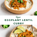 """curry with text """"vegan eggplant lentil curry""""."""