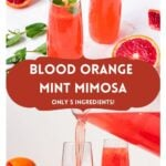 """mimosas with text overlay """"blood orange mint mimosa, only 5 ingredients!""""."""