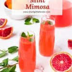 two glasses of blood orange mimosas with a pitcher and mint