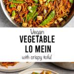 vegan vegetable lo mein with crispy tofu