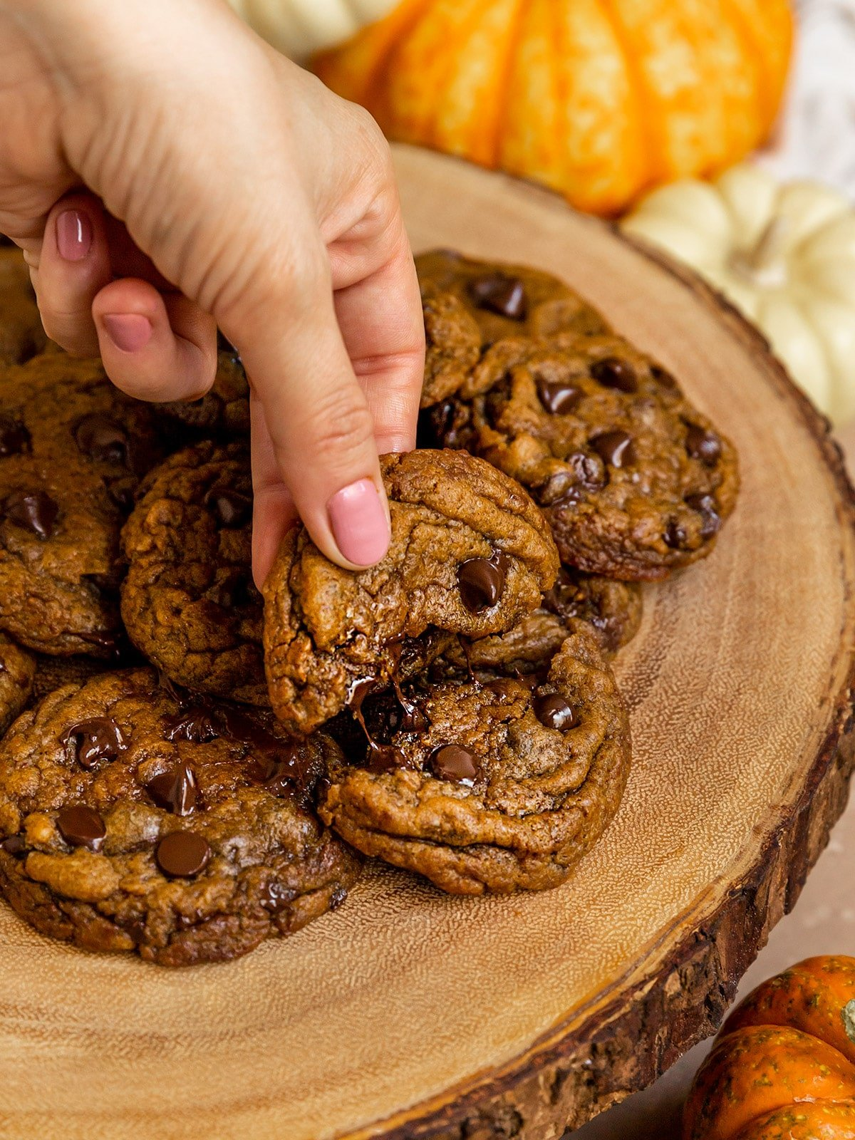 hand pulling a pumpkin chocolate chip cookie in half showing melty chocolate pull