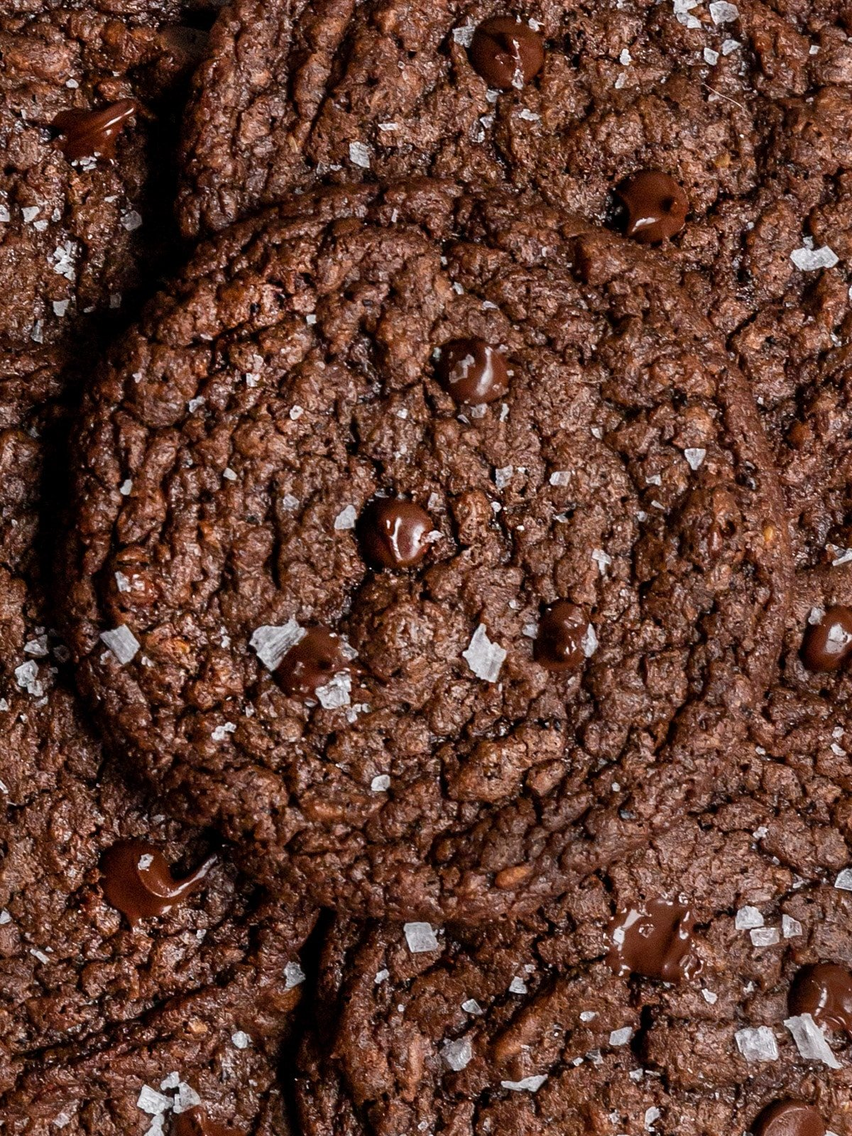 close up shot of a crinkly chocolate cookie with sea salt on top