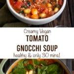 creamy vegan tomato gnocchi soup healthy & only 30 mins