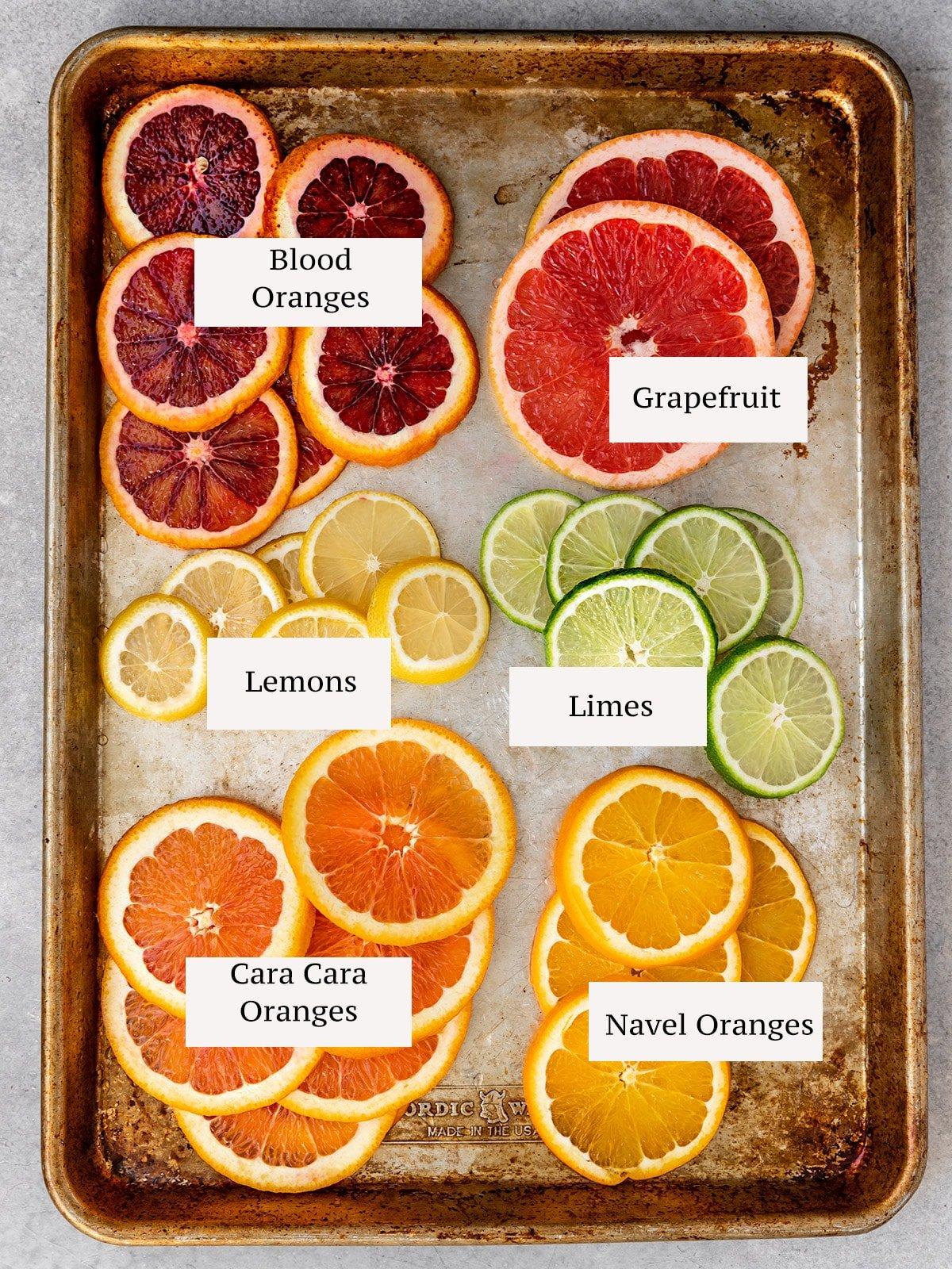 citrus on a baking tray labeled by fruit including blood oranges, grapefruit, lemons, limes, cara cara oranges, and navel oranges
