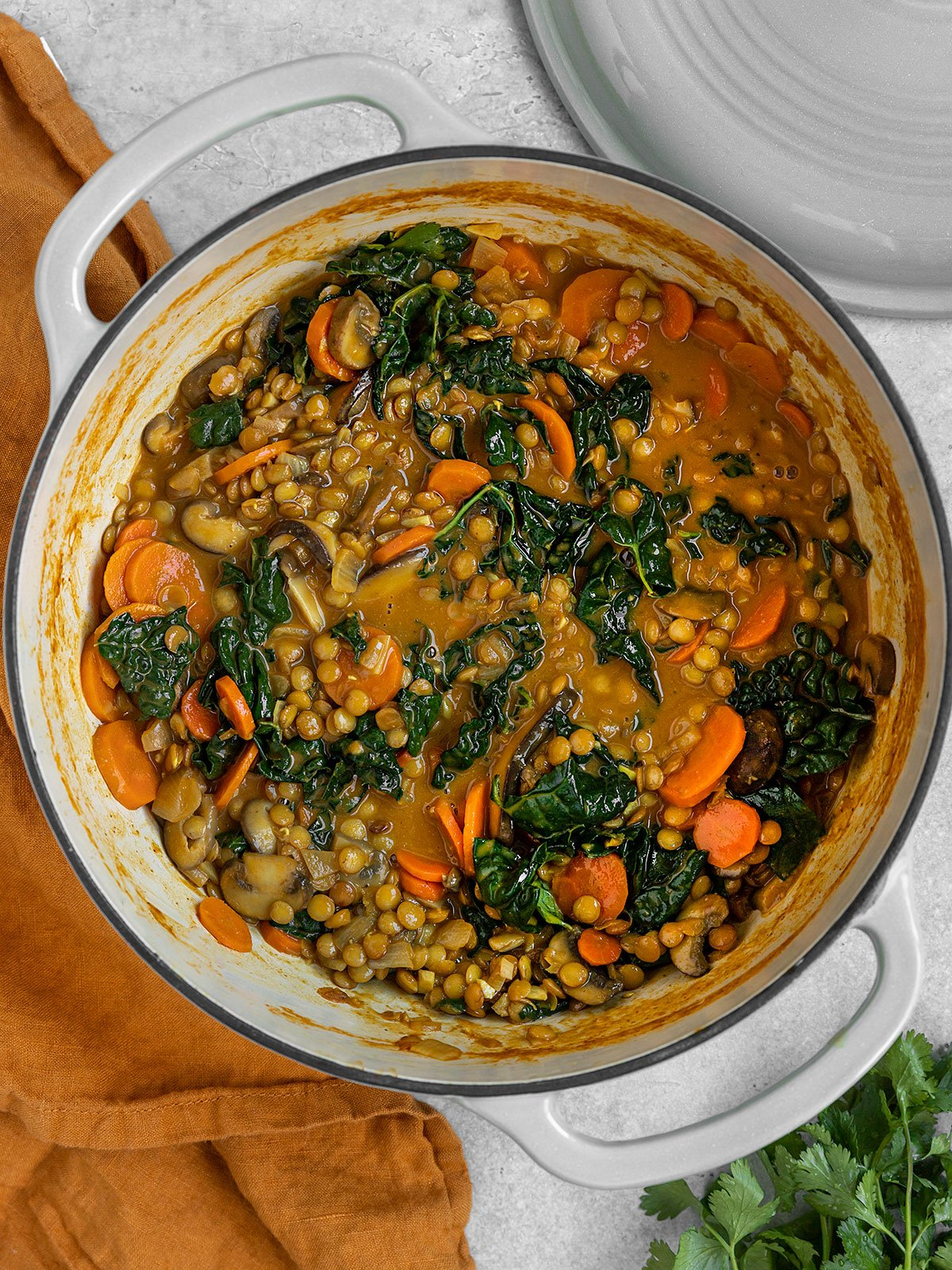a large pot full of a brown stew with lentils, carrots, mushrooms, and kale