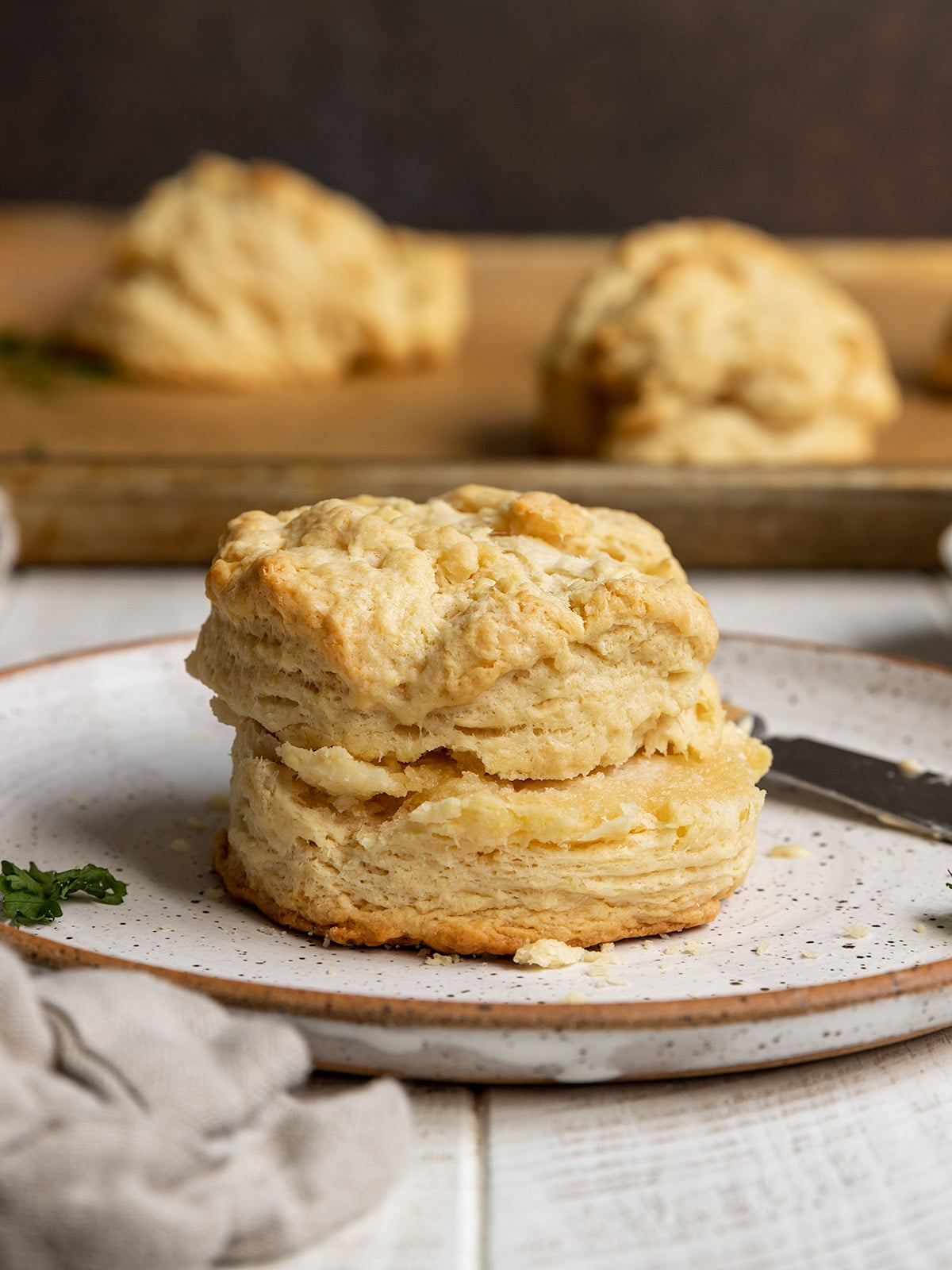 flaky biscuit on a plate