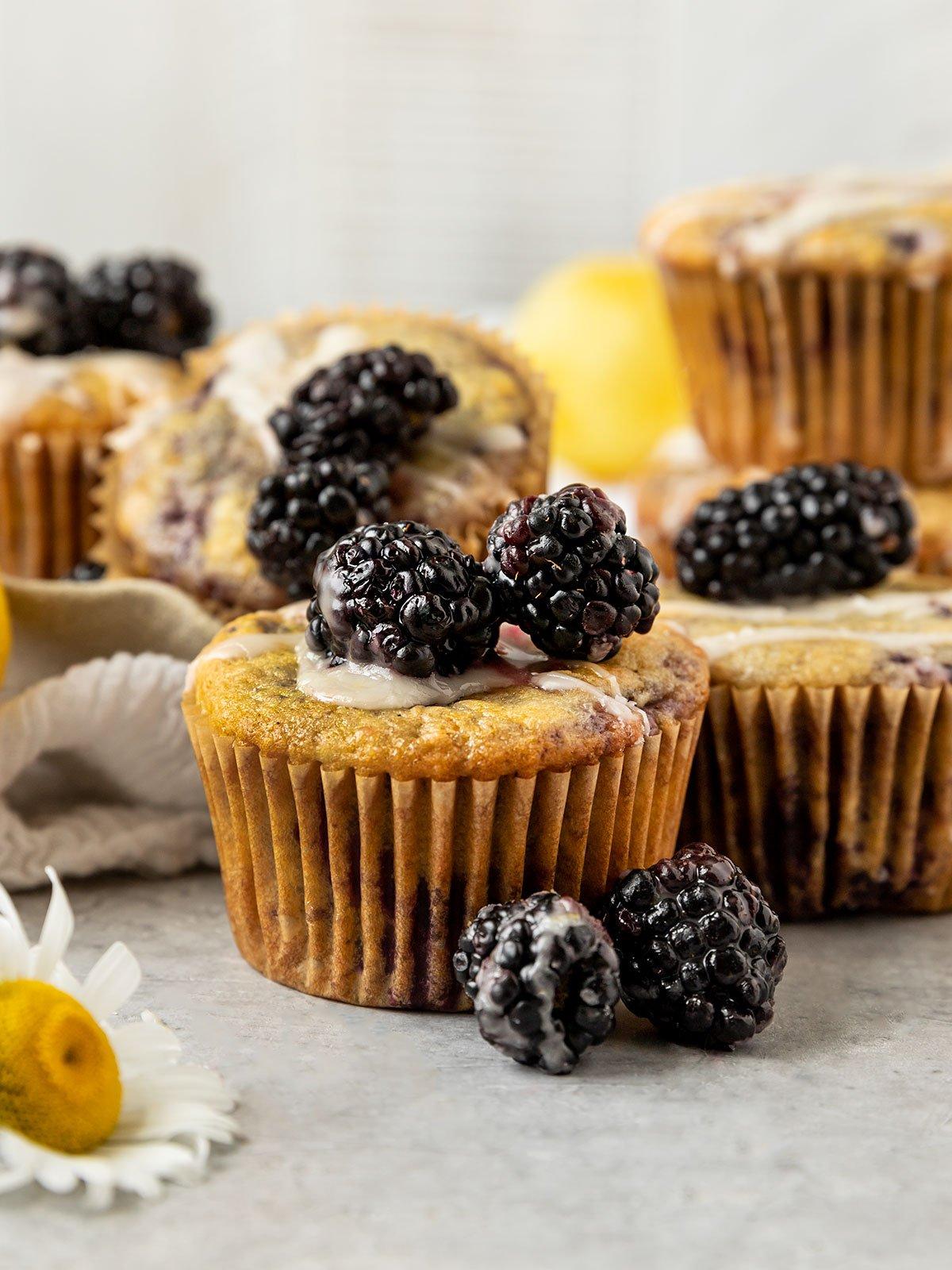 blackberry muffin topped with lemon glaze and fresh blackberries