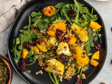 plate with arugula, farro, roasted vegetables, pepitas, cranberries, and an orange dressing on top